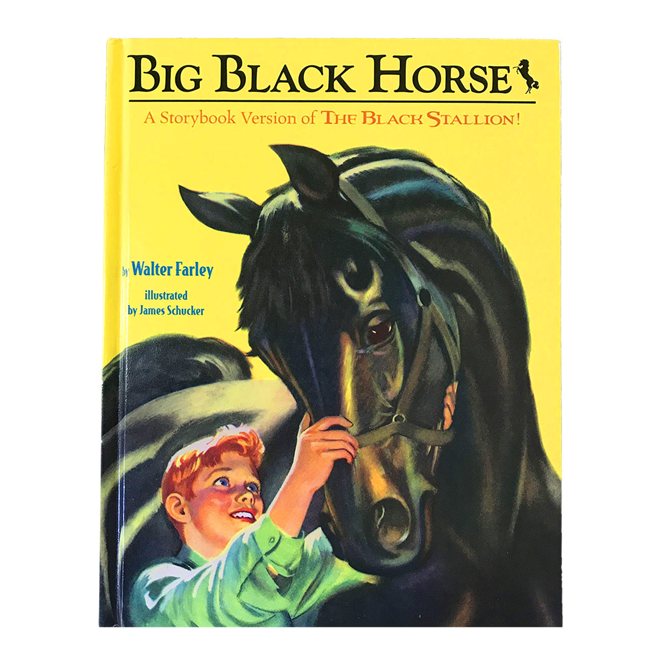Big Black Horse – Beginner Picture Book