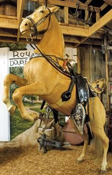 Trigger (taxidermied horse