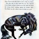 Big Black Horse Page 5