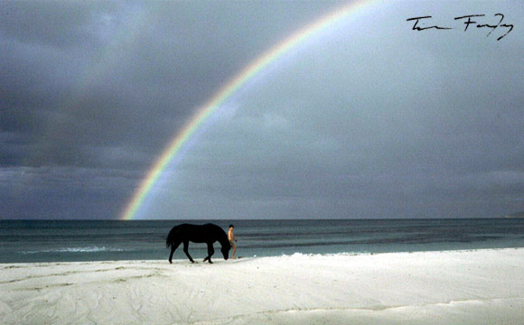 banner_home_anim_580x360_rainbow