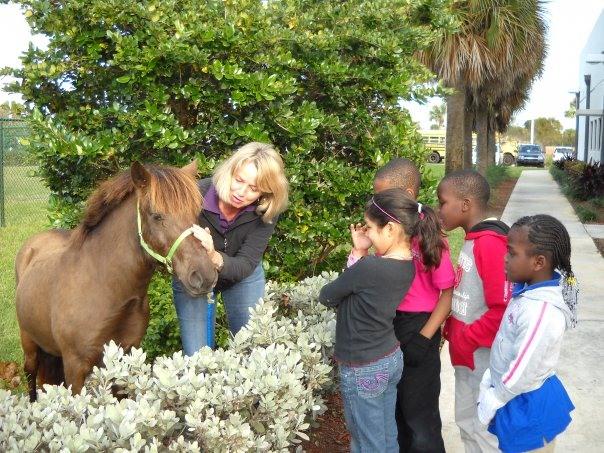 horse tales glenda