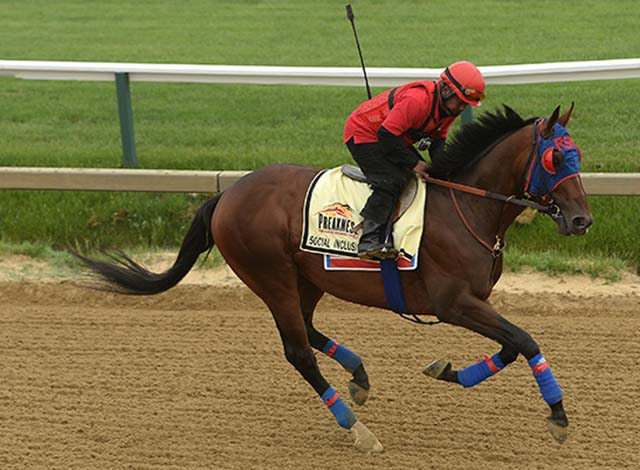 139th Preakness Stakes - Previews