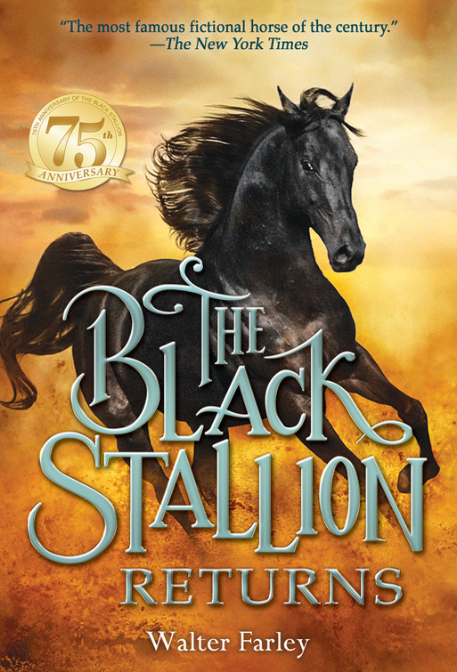 Black Stallion Returns cover 2015