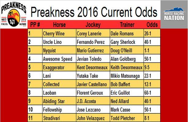 belmont current odds cali33 bets