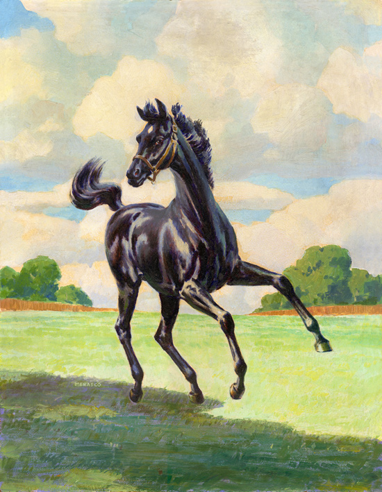 Son of Black Stallion 1947