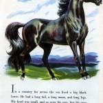 Big Black Horse Page 1